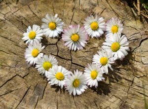words we daisy chain together